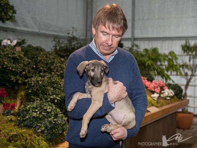 «Аптекарский огород» поддержал благотворительный проект помощи бездомным собакам