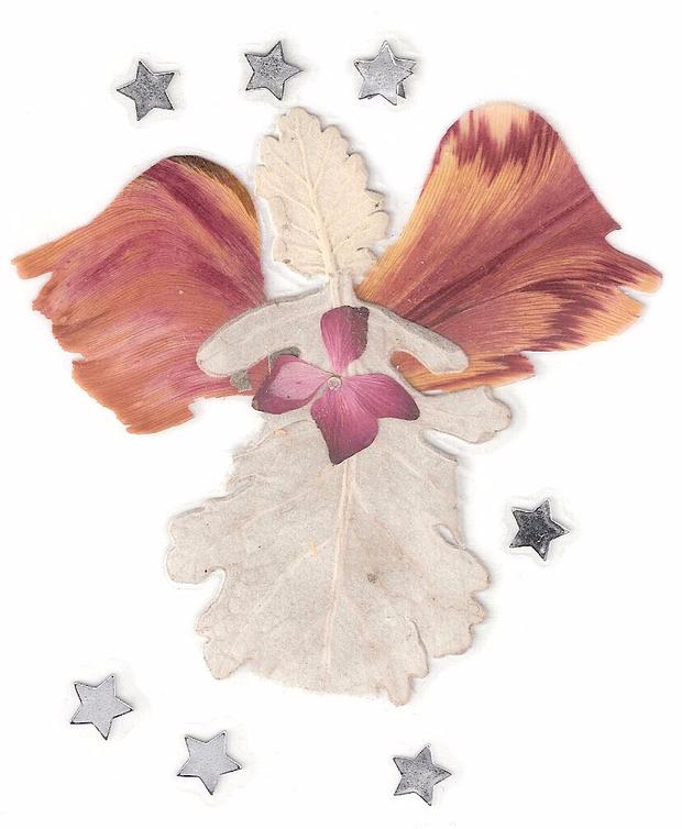 С 1 по 10 января в «Аптекарском огороде» научат делать рождественские открытки из цветов
