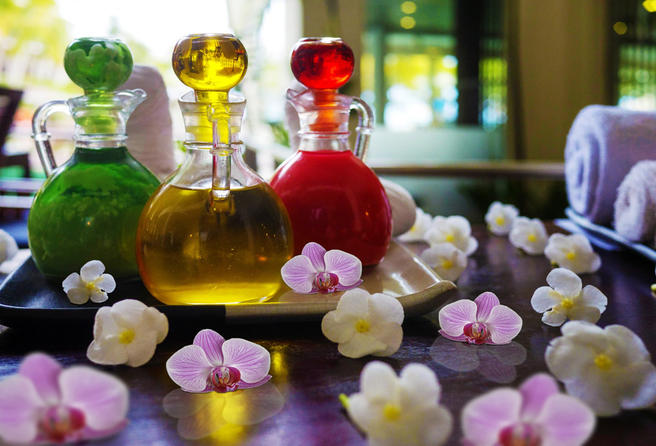 Мастер-классы «Цветочные абажуры» и «Аромауход с экзотическими цветами» пройдут в «Аптекарском огороде» 13 и 14 января