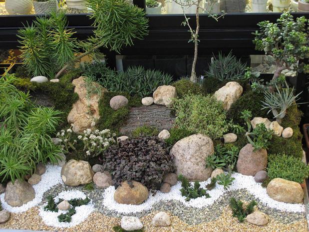 Фитодизайнеры украсили оранжерею с растениями пустынь в «Аптекарском огороде»