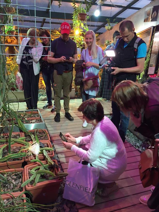Ночной кактус-черепаха и самая большая кувшинка в мире расцветут вечером 18 июля в «Аптекарском огороде»