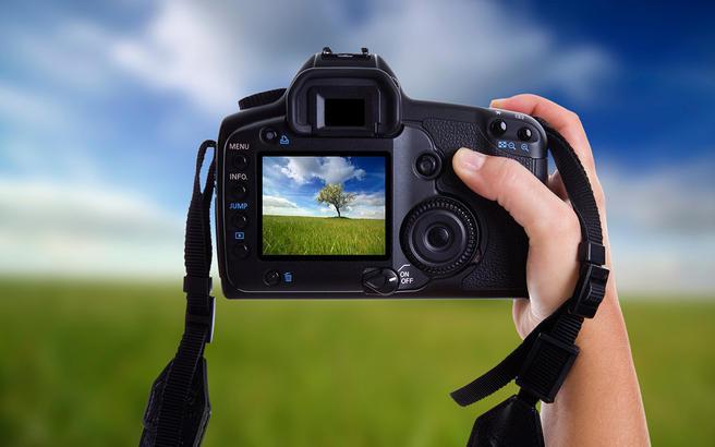 Бесплатные мастер-классы по фотографии для взрослых и детей пройдут 12, 19 и 26 июля под открытым небом в «Аптекарском огороде»