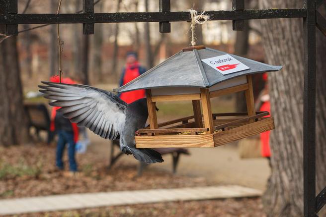 20 кормушек для птиц подарили «Аптекарскому огороду»