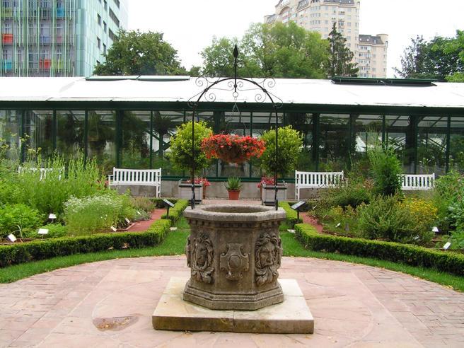 С 14 мая Сад лекарственных трав в «Аптекарском огороде» закроют для посещения на неделю