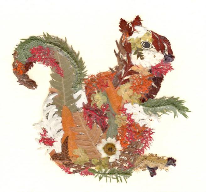 Белку из цветов можно будет сделать в «Аптекарском огороде» 10 и 11 декабря