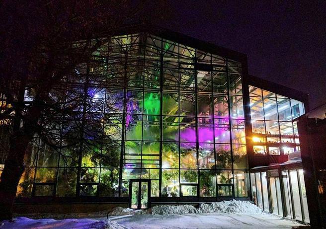 С 19 по 23 декабря Пальмовая и Суккулентная оранжереи в «Аптекарском огороде» будут закрыты