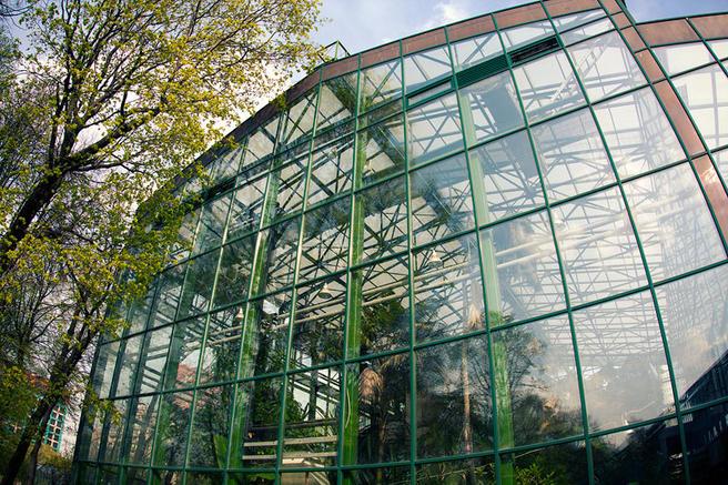 13 мая оранжерейный комплекс в «Аптекарском огороде» откроется в 16.00