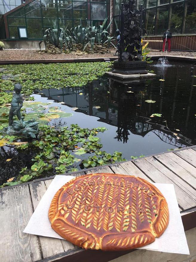 В честь скорого открытия оранжереи с самой большой кувшинкой в мире «Аптекарскому огороду» подарили пироги
