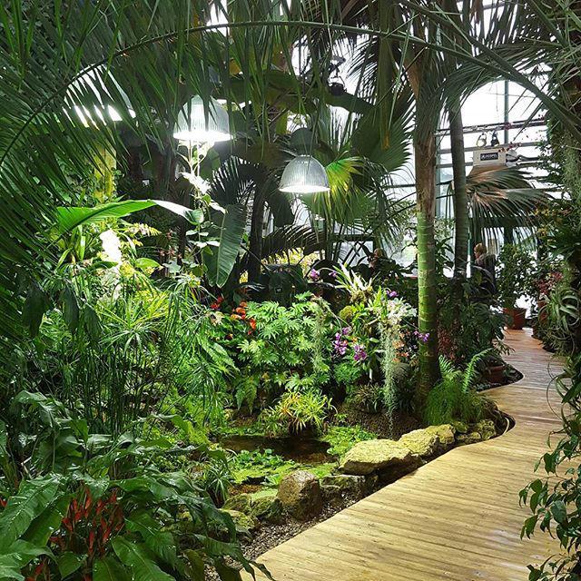 Тропические экскурсии для взрослых и детей пройдут с 4 по 6 ноября в «Аптекарском огороде»