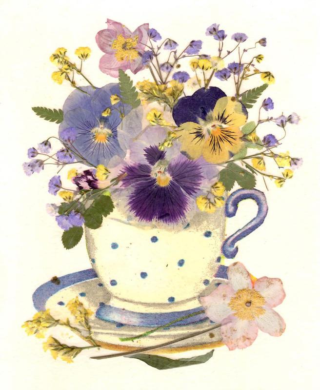 20 июля — мастер-класс «Чай с Цветами» в «Аптекарском огороде»