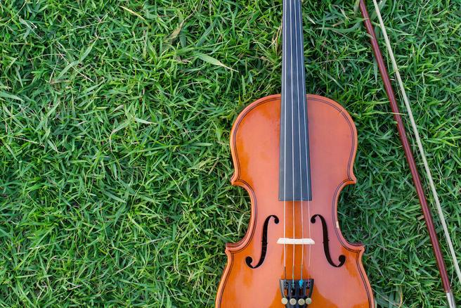 18 июня — II Ночной классический концерт на траве в «Аптекарском огороде»