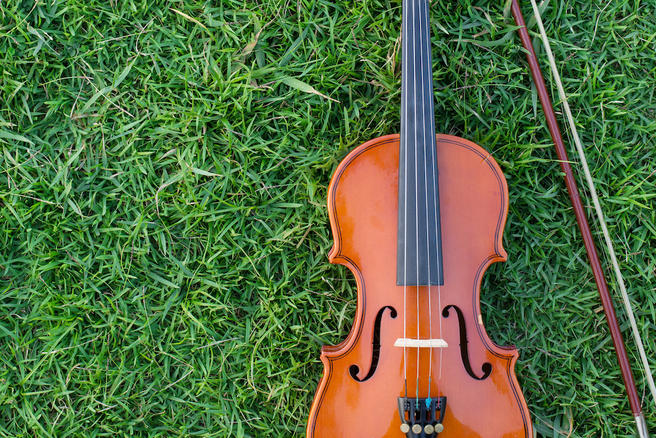 II Ночной классический концерт на траве в «Аптекарском огороде» переносится на 19 июня