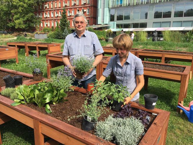 Первый в России сенсорный сад откроется в «Аптекарском огороде» 8 августа