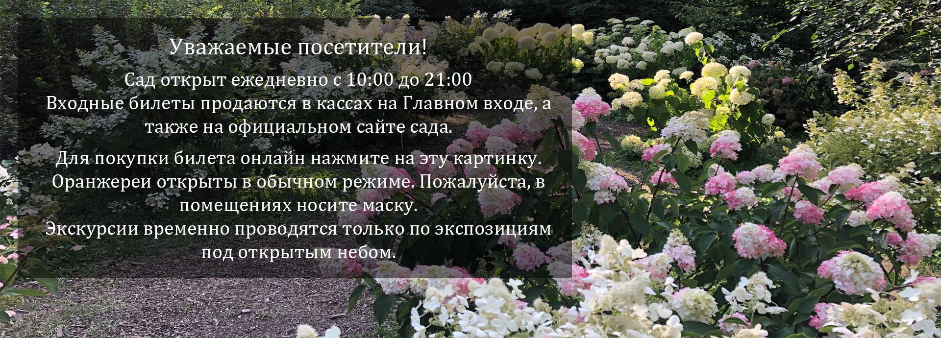 сад открыт